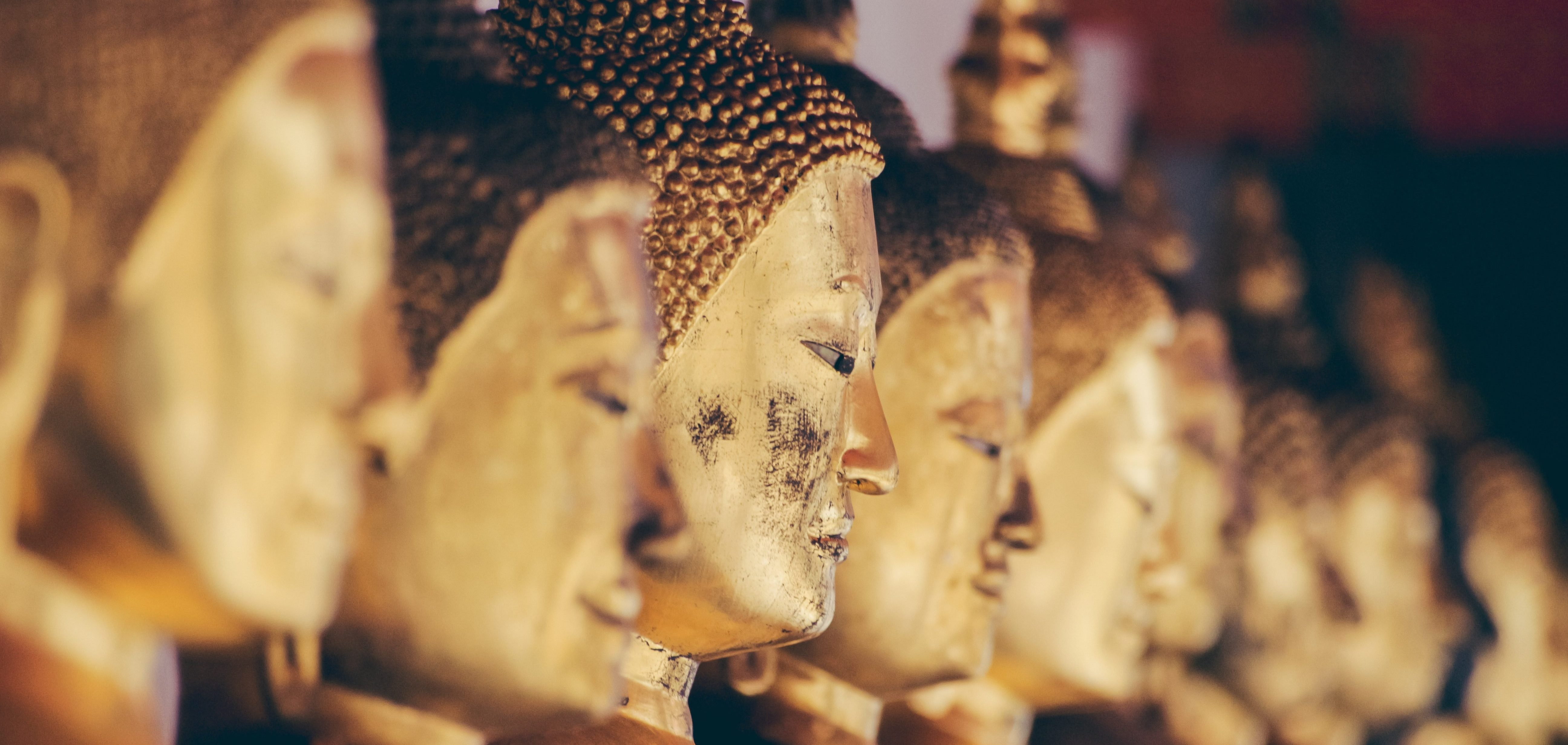 Buddhism exeter